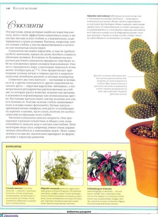 комнатные растения (95) (510x700, 227Kb)