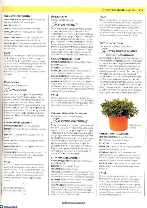 комнатные растения (147) (497x700, 227Kb)