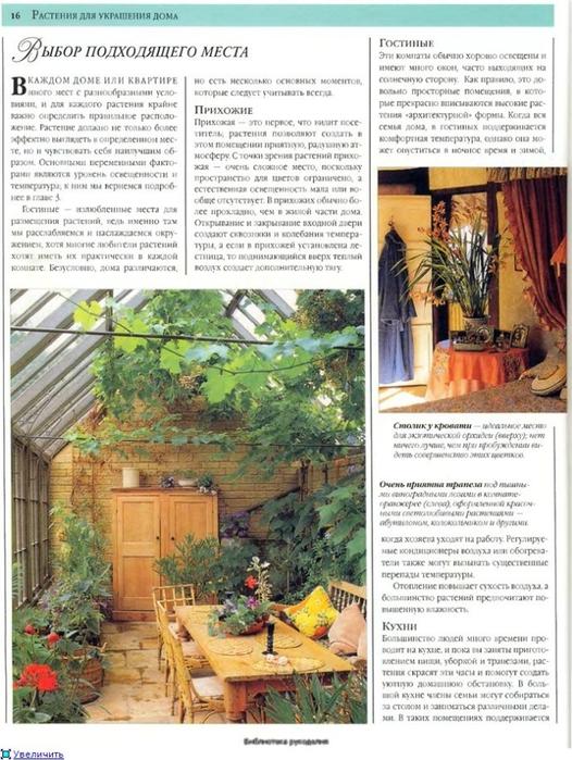 комнатные растения (155) (526x700, 305Kb)