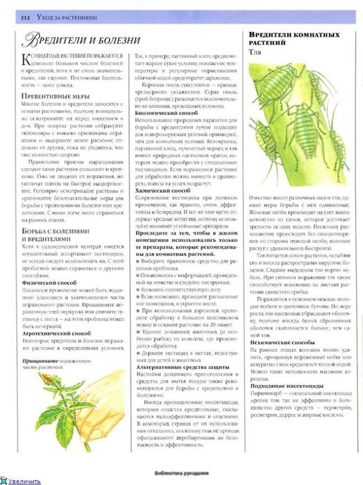 комнатные растения (174) (523x700, 234Kb)