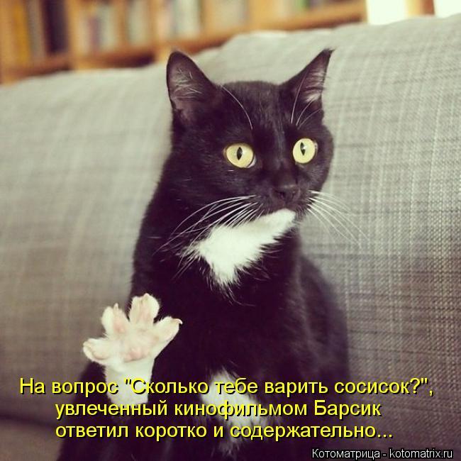 kotomatritsa_yH (650x650, 63Kb)