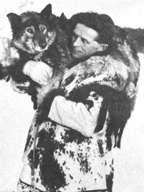 Картинки по запросу Собака-герой Балто.