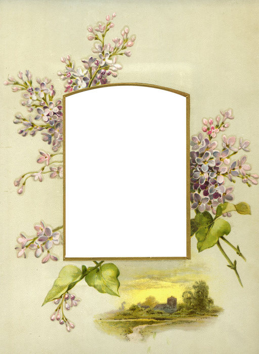 1368265806_Floral_Frame_No2_by_DustyOldStock (512x700, 74Kb)