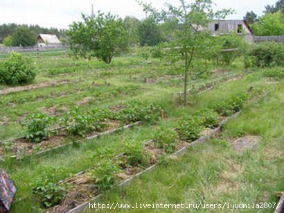 земледелие (410x307, 82Kb)