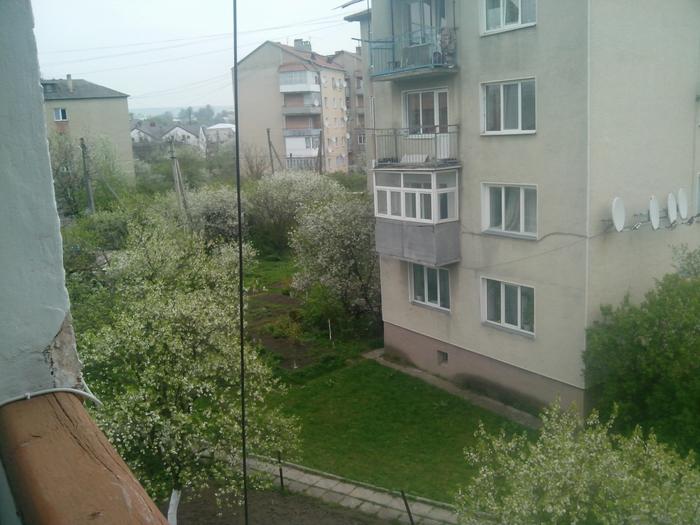 4437240_Lipova (700x525, 273Kb)
