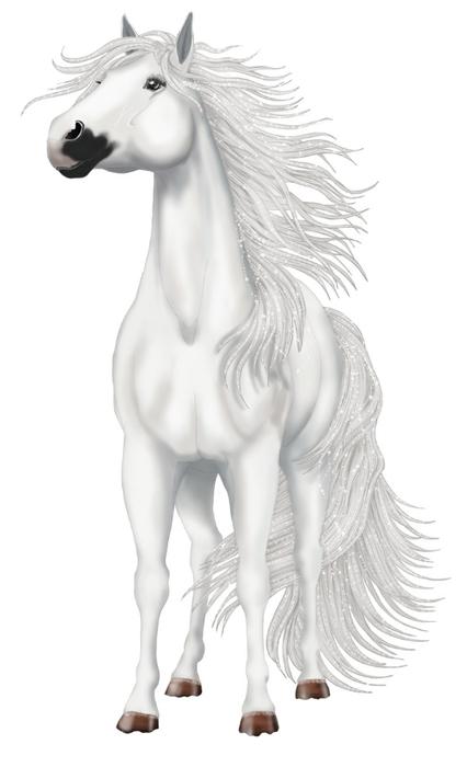 красивые фотографии лошадей (7) (426x700, 99Kb)