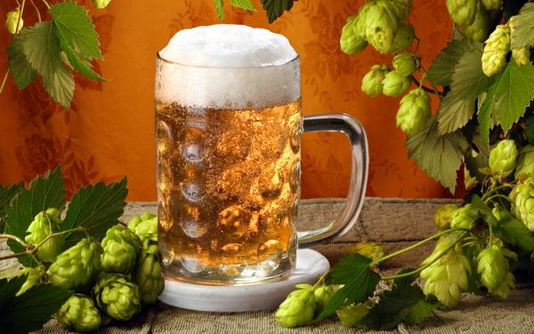 Пиво_и_хмель (600x375, 266Kb)