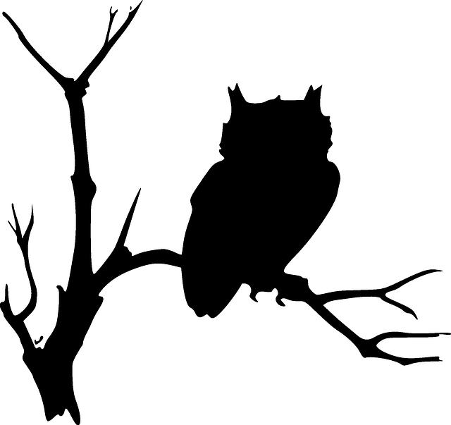 1368444004_black_1 (640x603, 61Kb)
