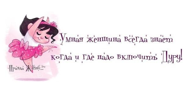 5031314_prada_dyra (600x291, 27Kb)