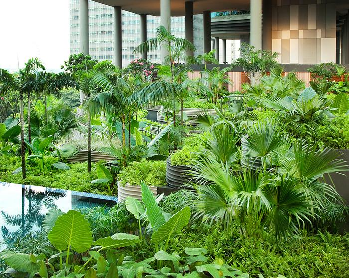 отель  Parkroyal Сингапур 11 (700x559, 401Kb)