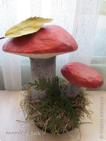 осенние грибы из папье-маше (6) (360x480, 35Kb)