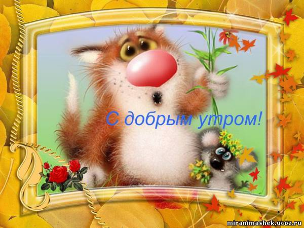 http://img1.liveinternet.ru/images/attach/c/8/100/885/100885765_720066180.jpg