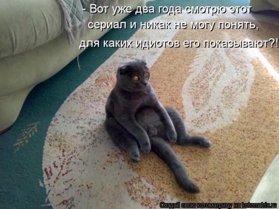 100925889_1362784088_kotomatritsa_lc.jpg