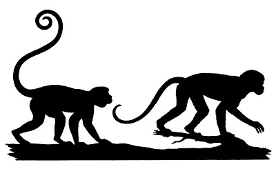 Silhouttes-Animals-Monkeys-GraphicsFairy (400x245, 24Kb)