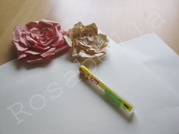 розы из бумаги (3) (600x450, 192Kb)