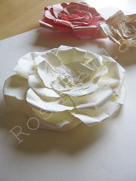 розы из бумаги (13) (450x600, 209Kb)