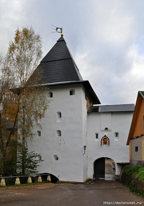Псково-Печерский монастырь19 (490x700, 190Kb)