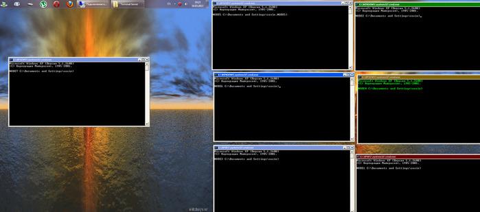 SoXiEs_cluster1 (700x309, 60Kb)
