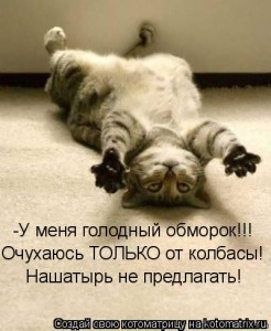 Nashatyrnyj_spirt_primenenie-246x300 (246x300, 24Kb)