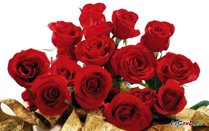 Плейкаст миллион алых роз для тебя