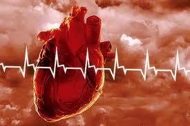 сердечно (275x183, 8Kb)
