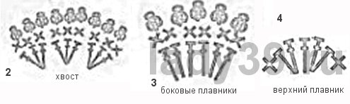fish_ch (495x148, 17Kb)