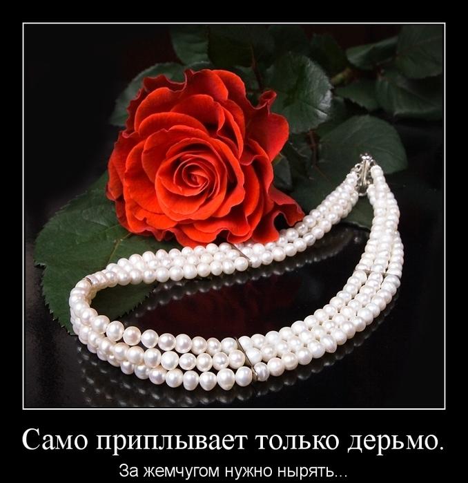 image_fb2a14a34f06ab889ff34df6566158b3 (678x700, 252Kb)