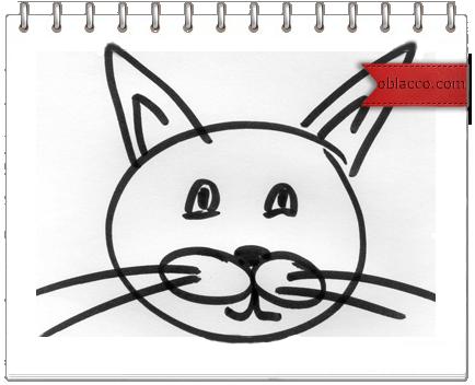 10 кошачьих заповедей и... Почему кошка лучше чем женщина/3518263_cat (434x352, 123Kb)
