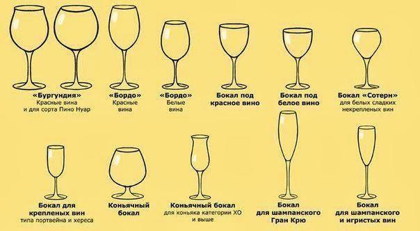 Как называются различные бокалы и их назначение