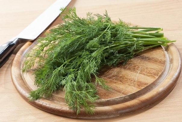 полезные растения и зелень