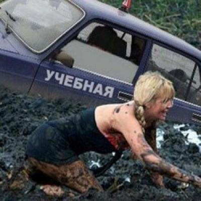 женщина за рулём (400x400, 43Kb)