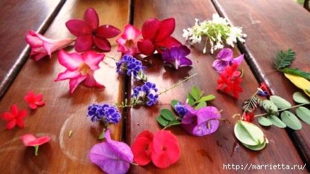 как сделать свечу с сухоцветами своими руками (5) (448x252, 86Ko)