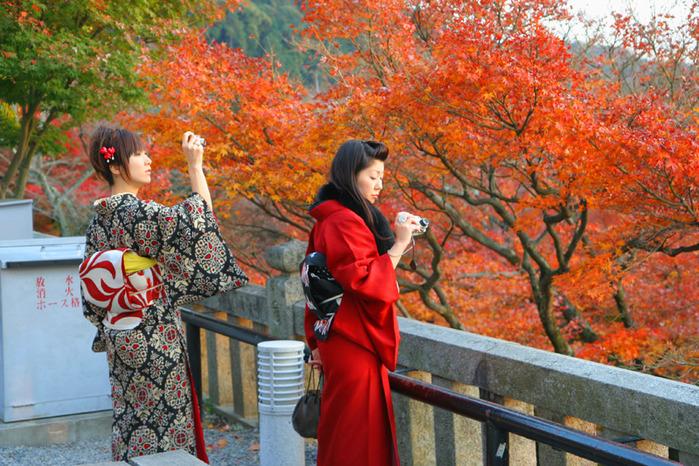 ЯПОНСКИЙ ДЗЕН САД / JAPAN GARDEN 253 фотогрфии.