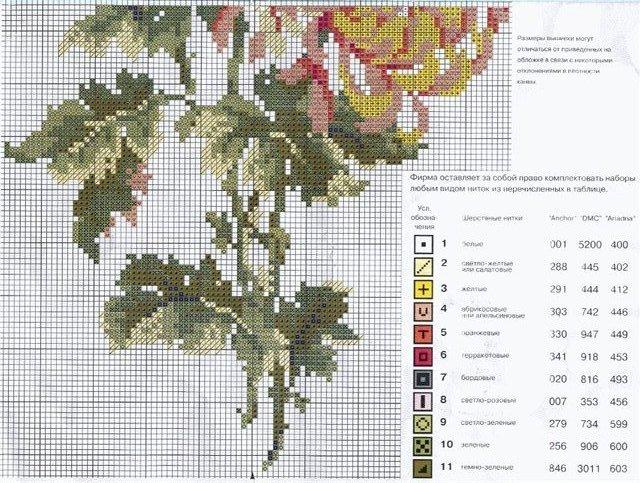 хризантема (640x483, 115Kb)