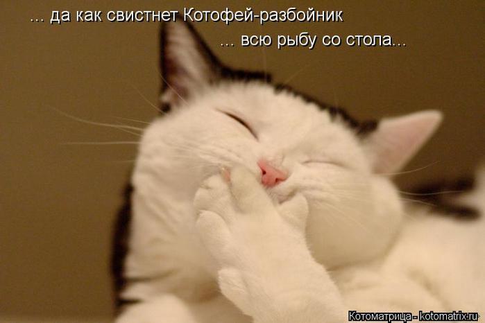 kotomatritsa_ho (700x466, 28Kb)