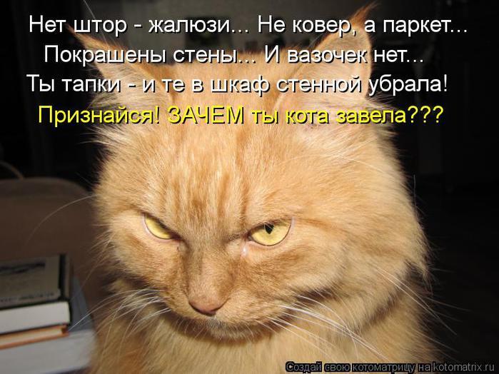 kotomatritsa_LB (700x524, 64Kb)