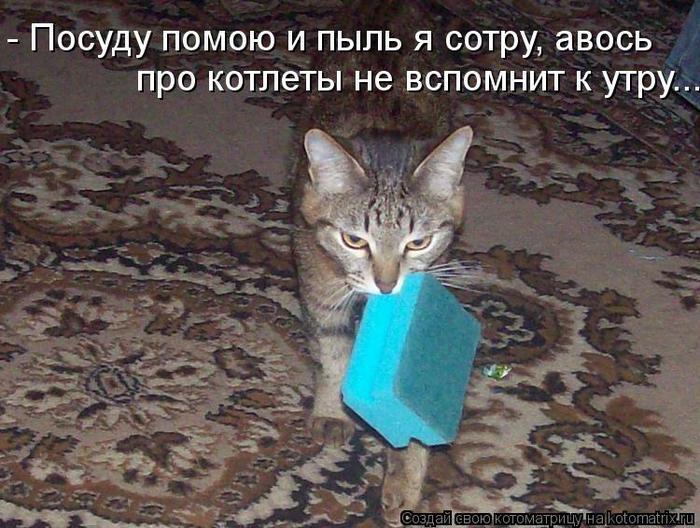 kotomatritsa_T (700x528, 77Kb)
