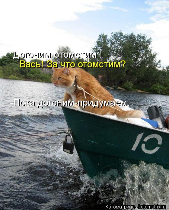kotomatritsa_vv (560x695, 80Kb)