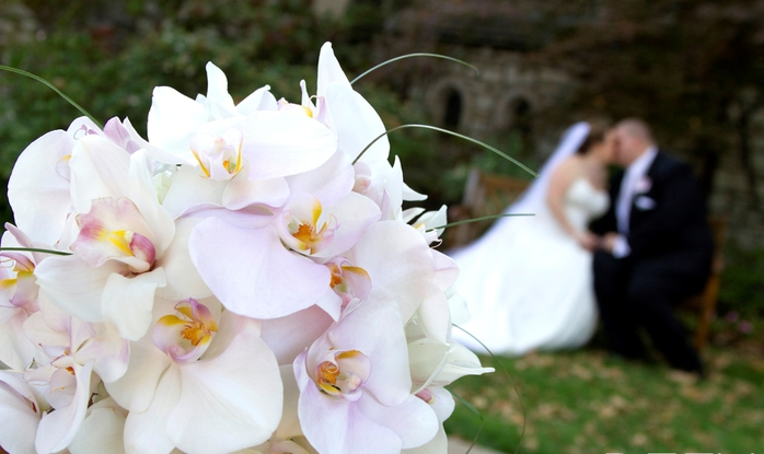 bride-and-groom-behind-orchids (700x415, 157Kb)