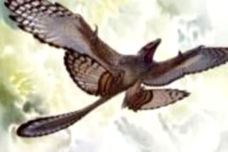 Китай -4х-крылые птицы (320x213, 39Kb)