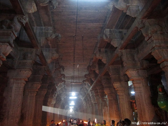 Индия, Канчипурам, 34 (640x480, 201Kb)
