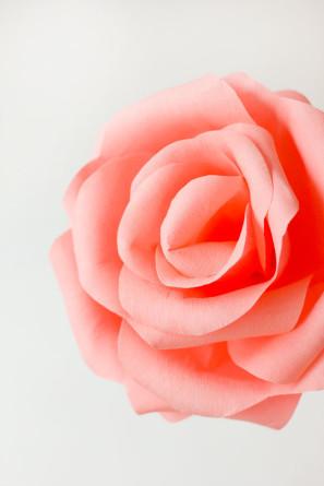 гигантские розы из гофробумаги (27) (297x445, 26Kb)