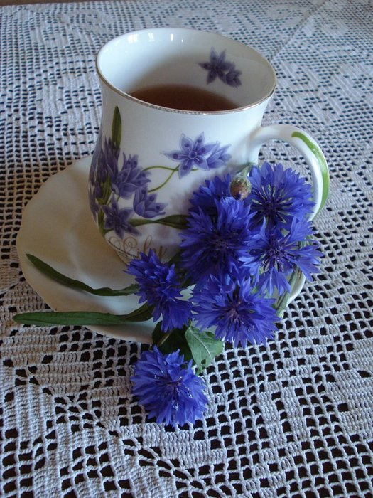 Чай с васильком (525x700, 119Kb)