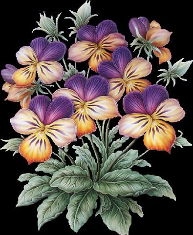 kvetiny_mix (46) (395x482, 375Kb)