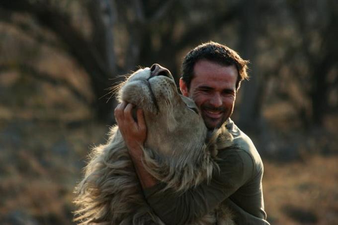 Kevin Richardson львы фото 2 (680x453, 71Kb)