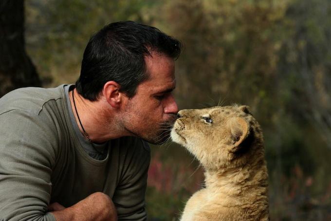 Kevin Richardson львы фото 8 (680x454, 91Kb)