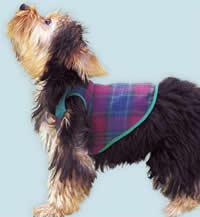одежка для собачки (2) (200x217, 6Kb)