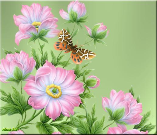 Розовые-цветы (450х385, 167Kb)