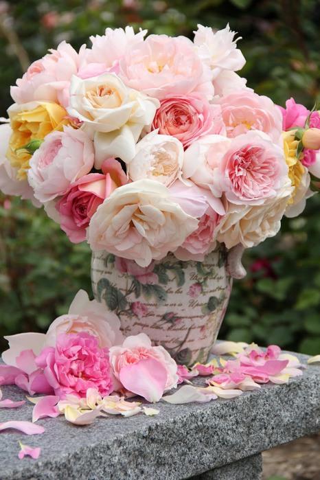 есенни рози (466x700, 105Kb)