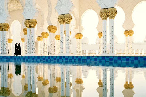 7_Sheikh_Zayed_Grand_Mosque^1 (620x413, 127Kb)